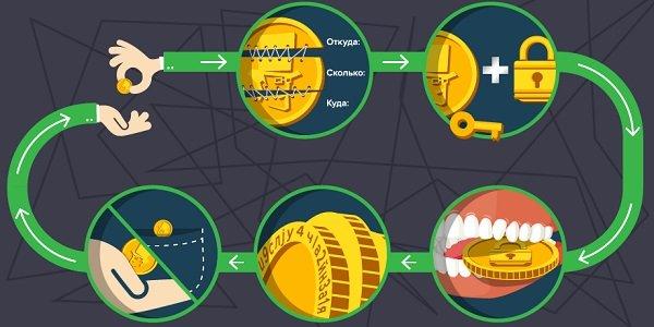 хема транзакции биткойна