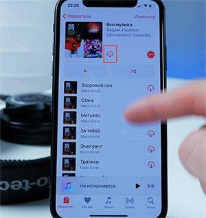 Останется открыть его в iPhone и нажать кнопку загрузить и дождаться пока вся медиатека скачается