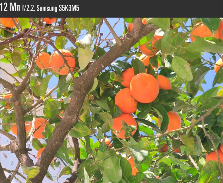 Xiaomi Mi 9: пример фото