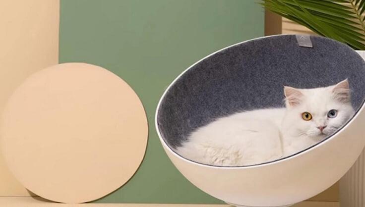 Кошкаместо Xiaomi Rotating Interactive Cat
