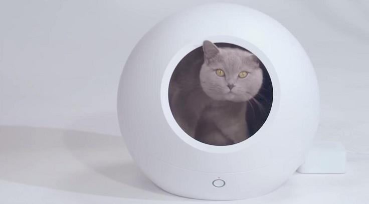 Умный домик для кошек