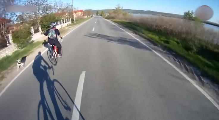 Так же, такое отпугиватель часто крепится к велосипеду
